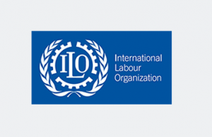 Consultant to the International Labour Organisation